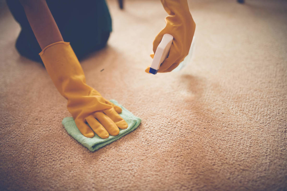 professional carpet cleaning southington ct