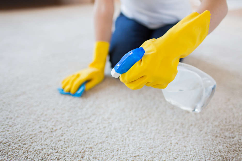 carpet steam cleaning near me