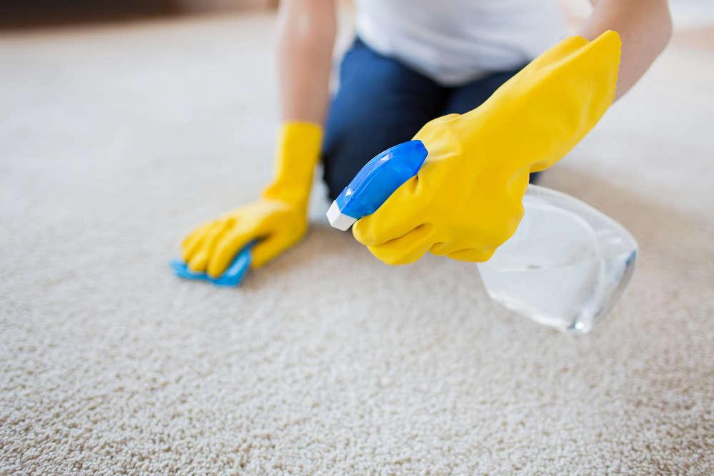 carpet steam cleaning near me